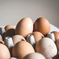 houdbaarheid eieren